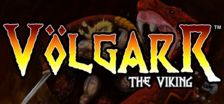 Volgarr The Viking Banner