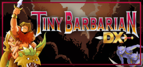 Tiny Barbarian DX Banner