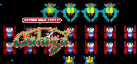 ARCADE GAME SERIES: GALAGA Banner