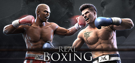 Real Boxing™ Banner