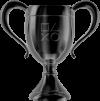 hidden trophy