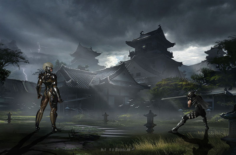 raiden-vs-ryu-faceoff